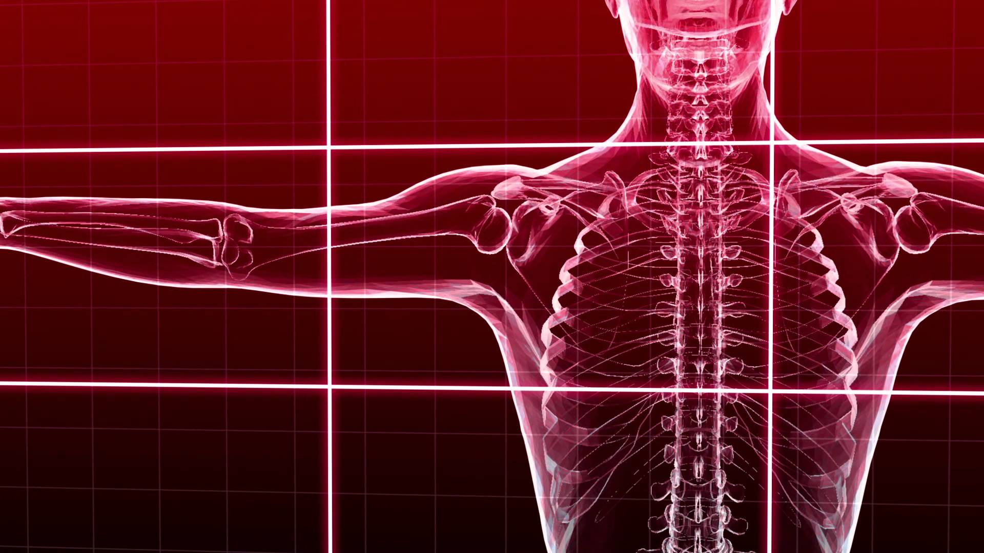 Reactive Muscle Kinesiology Dietnet