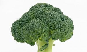 AJ6T2X Broccoli