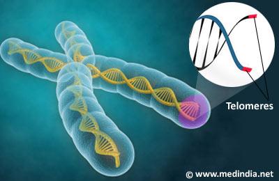 telomeres10