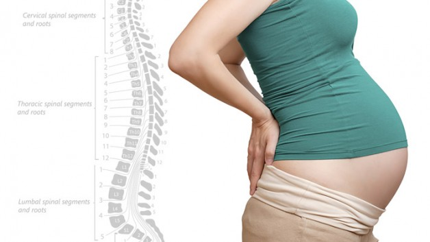pregnancy-spine